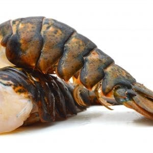 Lobster tail – raw