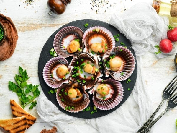 cooked Scallop on halfshell – beauty pic licensed